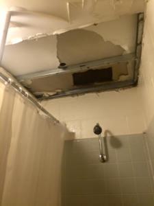 Miranda ceiling 2